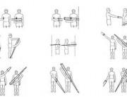 esercizi elastici